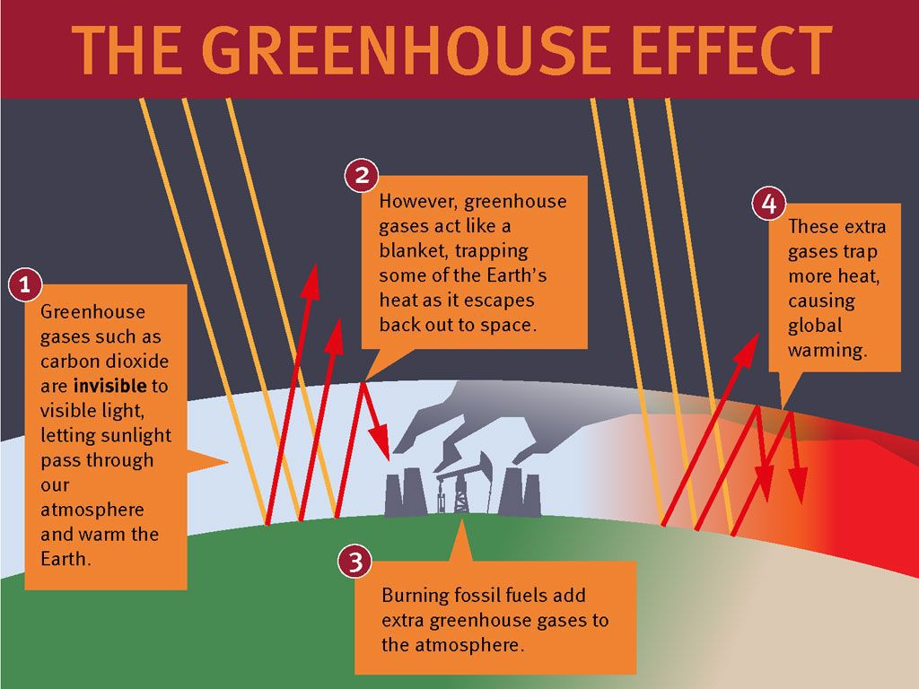 an essay on the greenhouse effect and global warming