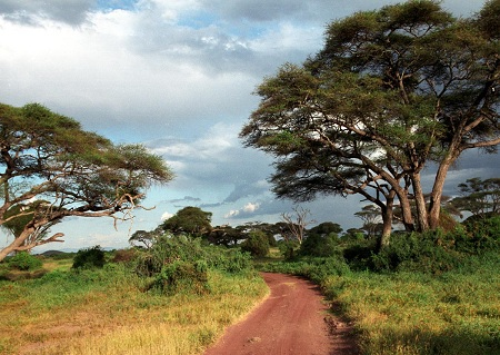 Nairobi klima